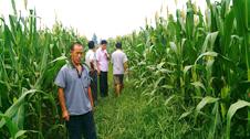 农村土地承包经营权确权登记项目